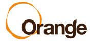 オレンジ_オレンジ